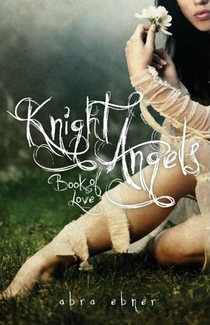 Knight Angels: Book of Love Review