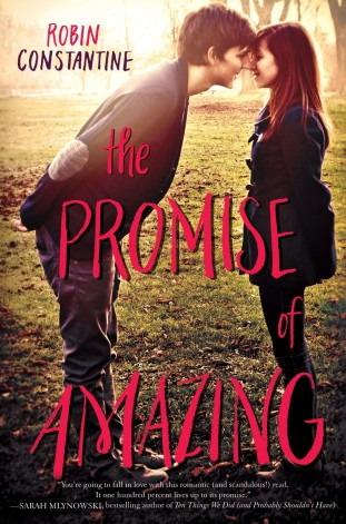 Book Review: The Promise of Amazing by Robin Constantine