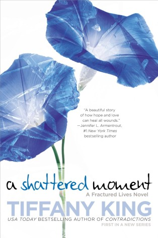A Shattered Moment by Tiffany King Cover